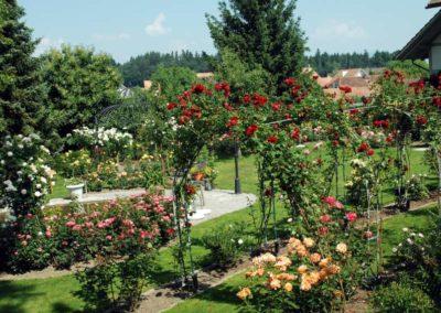 Garten_2-850